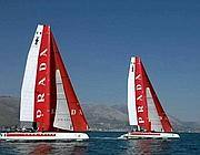 I due cat di Luna Rossa (Faraglia)