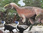 La ricostruzione dello Yutyrannus, sotto di lui due Beipiaosauri (i più grandi dinosauri con le pime finora trovati) che assomigliano a grossi tacchini (Afp)