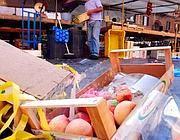 Ogni anno ogni famiglia butta via un intero stipendio sprecando cibo (Jpeg fotoservizi)