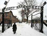 Il campo di sterminio di Auschwitz  (Ansa/Fusco)