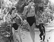 Lo scimpanzè Cita con Johnny Weissmuller