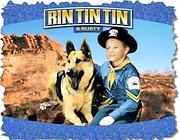 Rin Tin Tin e l'inseparabile amico Rusty
