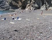 Ombrelloni piantati in spiaggia
