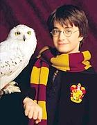 Harry Potter con la sua civetta Edvige