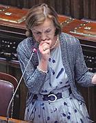 Il ministro Elsa Fornero  in aula (LaPresse)