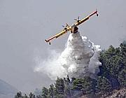 Canadair in azione nei boschi del Palermitano  (Fotogramma)