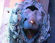 La testa di leone  recuperata sul fondale