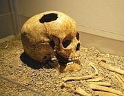 Il teschio del �bambino di Fidene� esposto a Roma