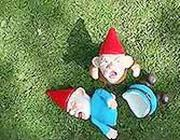 Il «feroce» nano da giardino