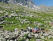 Gli archeologi al lavoro sulle Alpi francesi (Un. di York)