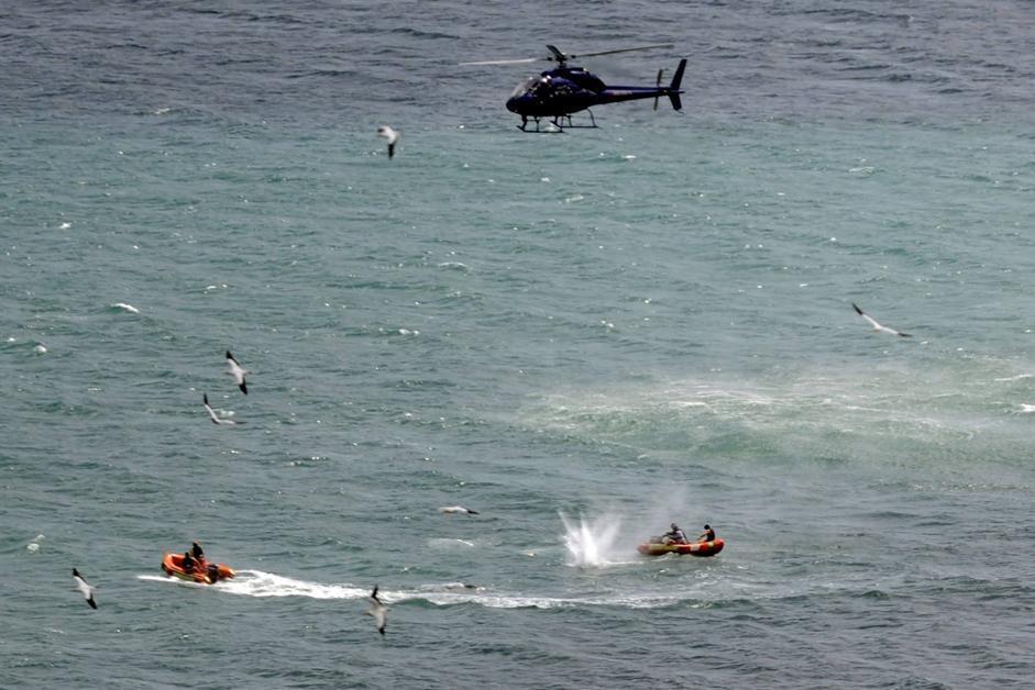 Elicottero Squalo : Nuova zelanda squalo bianco uccide un bagnante