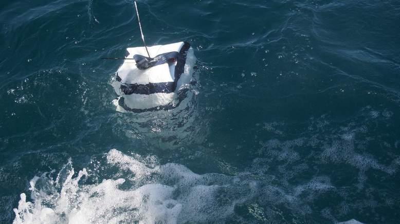 Australia ecco il costume che tiene lontani gli squali - Bagno con gli squali sudafrica ...