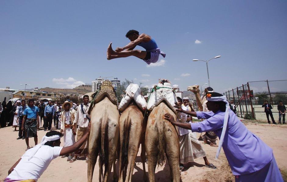Salto di tre cammelli (REUTERS/Khaled Abdullah)