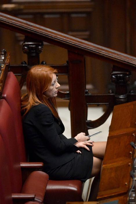Michela Vittoria Brambilla (Daniele Scudieri/Imagoeconomica)