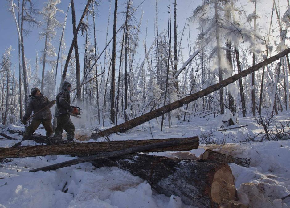 Anche in pieno inverno proseguono i lavori nella foresta presso Tomtor (Reuters/Maxim Shemetov)