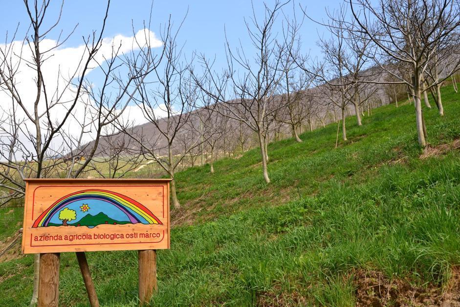 Azienda agricola Marco Osti, Maso Fratton (Bragonzi/Wwf)