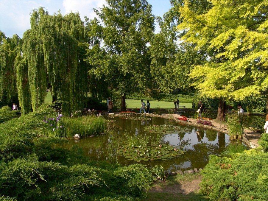 La Villa Medicea di Castello rappresenter� l'Italia nella sfida autunnale dei parchi pi� belli d?Europa