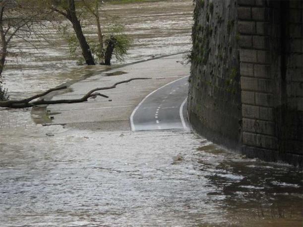 A Roma la ciclopista navigabile, in una delle immagini segnalate sul