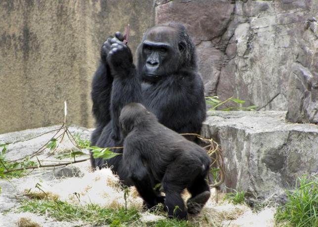 Anche Hasani, il figlio adottivo di 20 mesi è incuriosito e cerca di avvicinarsi (Olycom/Christina Spicuzza)