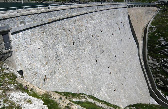 Stambecchi in bilico sulla diga del lago Cingino in Piemonte (Adriano Migliorati)