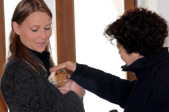 La veterinaria Claudia Pescarolo con uno dei piccoli ospiti del centro (Fotogramma)