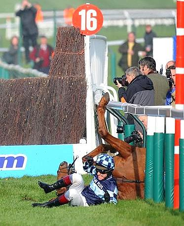 Al  Cheltenham Festival Horse Racing in Gloucestershire spettacolare volo del  fantino Richard Johnson, che cade rovinosamente dopo un ostacolo. Momenti di paura in tribuna per la duchessa Camilla e Zara Phillips, spaventata per le sorti dell&#39;ex fidanzato. Nonostante le apparenze, niente di grave per Johnson e il suo cavallo Wishfull Thnking (Olycom)