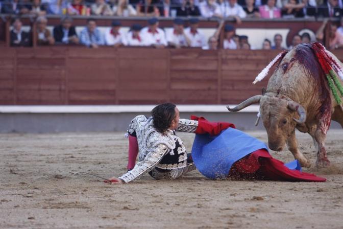 Il torero Julio Aparicio finisce a terra nell'area di Madrid (Afp)