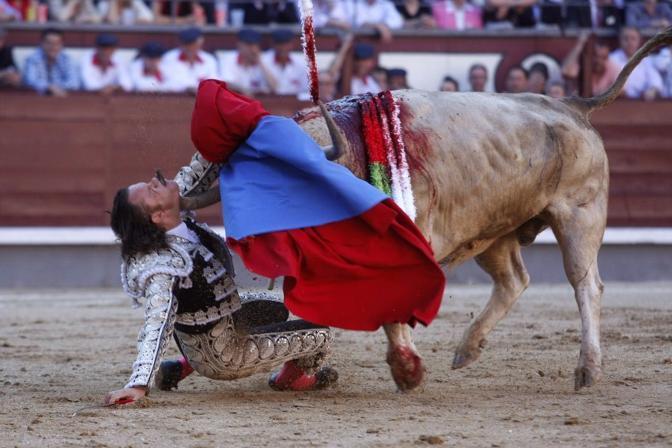Il toro trafigge alla gola il torero (Ap)