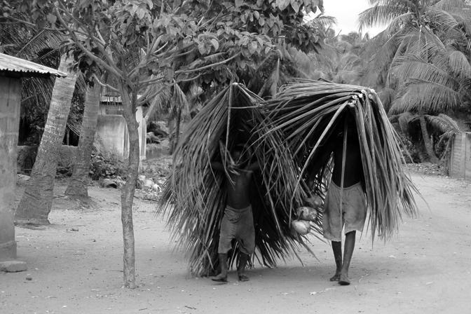 Togo. Molti bambini nel mondo sono impiegati in agricoltura e non riescono a frequentare la scuola (Cristina Francesconi/Cesvi)