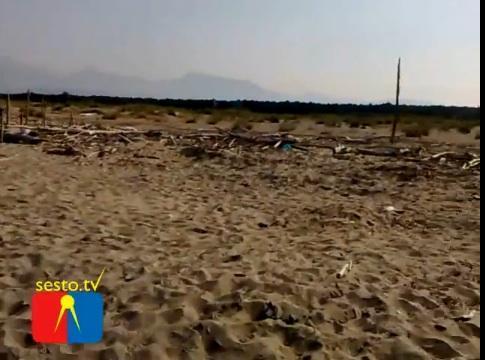 Viareggio, spiaggia della Lecciona. Video segnalato da un lettore