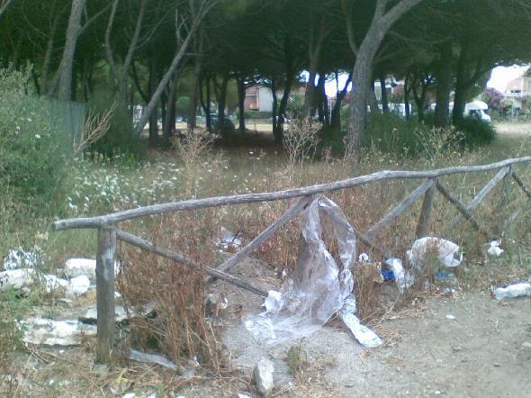 Tarquinia (Viterbo) Tre pinete nel centro abitato di Tarquinia Lido ridotte a pattumiere a cielo aperto (Segnalazione firmata)