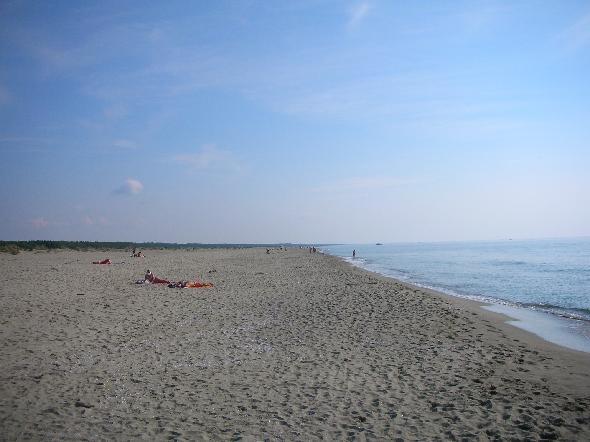 Lecciona, sud di Viareggio. Fino ad un paio di anni fa, questa spiaggia, che fa parte del Parco Naturale di Migliarino, era magnifica e pulitissima, come si vede in questa foto. Improvvisamente la pulizia della spiaggia è cessata e tonnellate di detriti (tronchi, latte di benzina, bottiglie di plastica si sono accumulate). Come è possibile che l'Ente responsabile di un Parco lasci che questa spiaggia rimanga in queste condizioni? (Segnalazione firmata)