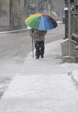 Neve in Romagna (foto Ipp/Venturini Cusercoli)
