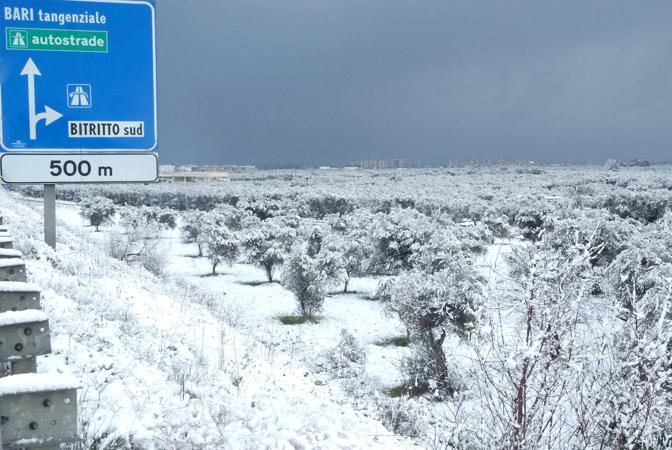 Neve anche in Puglia. Nella foto le campagne intorno a Bitritto, Bari (Ansa/Turi)