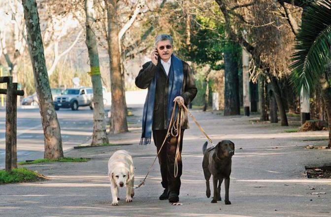 Massimo d?Alema con i suoi cani Lulù e Penelope durante la consueta passeggiata intorno all?isolato, con sosta al parco - Foto di  Antonio Scattolon