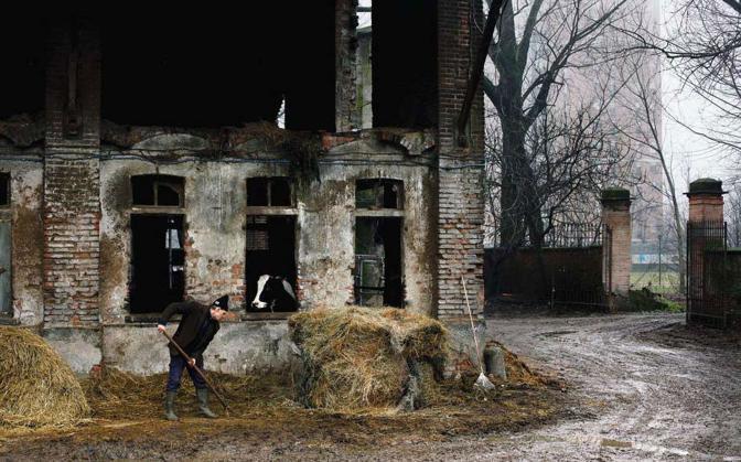 In periferia sopravvivono le cascine. Fino a quando, non si sa. Questa è Cascina Campazzo, si trova nel parco agricolo urbano del Ticinello ed è gestita da Andrea Falappi, 60 anni, una vita da contadino. Ora la proprietà ha richiesto lo sfratto esecutivo - Foto di  Massimo di Nonno