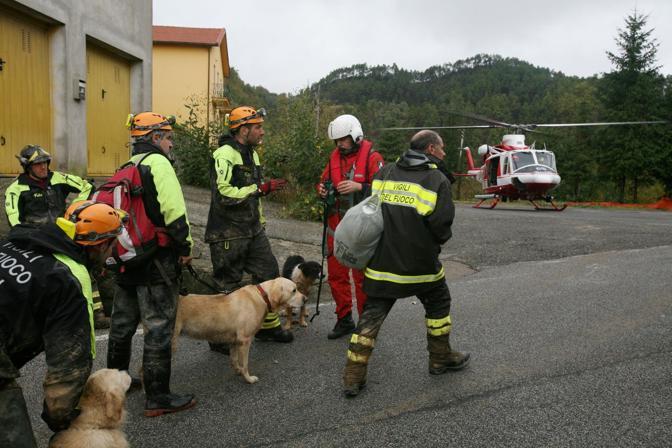 Pompieri cinofili con i cani a Cassana, frazione di Borgheto Vara, durante le ricerche dei sopravissuti  (Gerace)