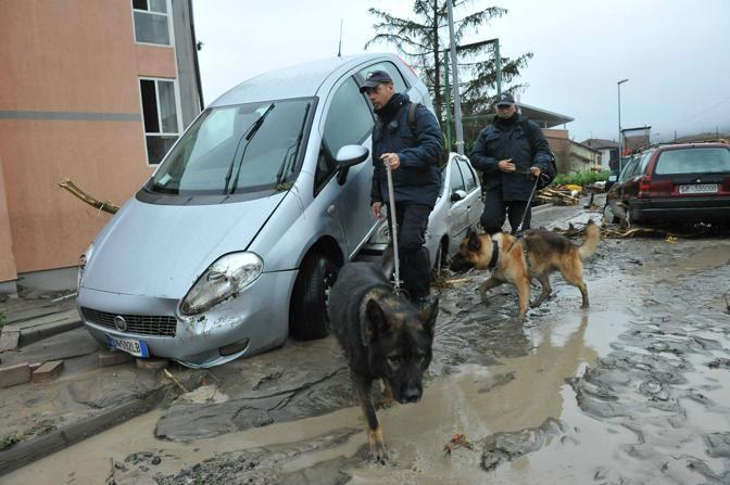 Sono arrivati anche i cani (Ansa)