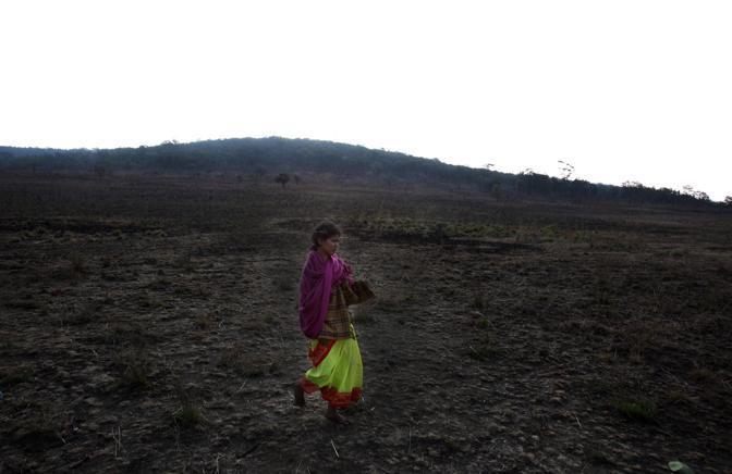 La tribù dei Dongria durante una celebrazione per la Terra, sulla montagna sacra di Niyamgiri, la montagna che la Vedanta vorrebbe trasformare in miniera (