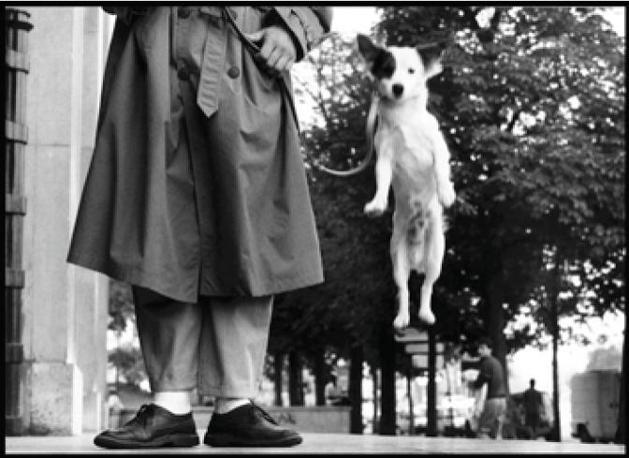 Paris, FRANCE. 1989. © Elliott Erwitt / Magnum Photos / Contrasto