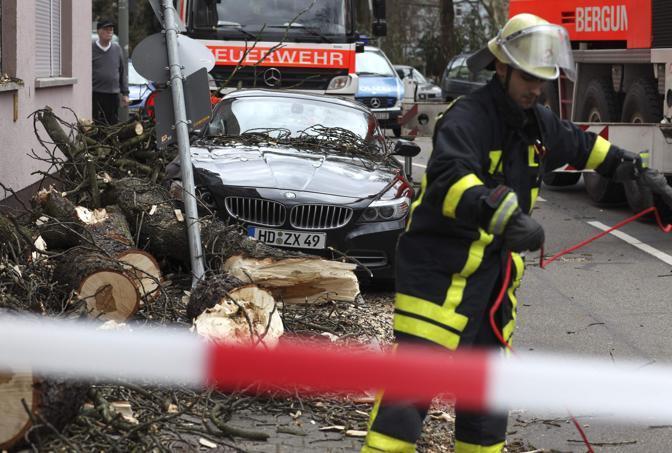 Danni anche in Germania: alberi caduti a Francoforte (Reuters)