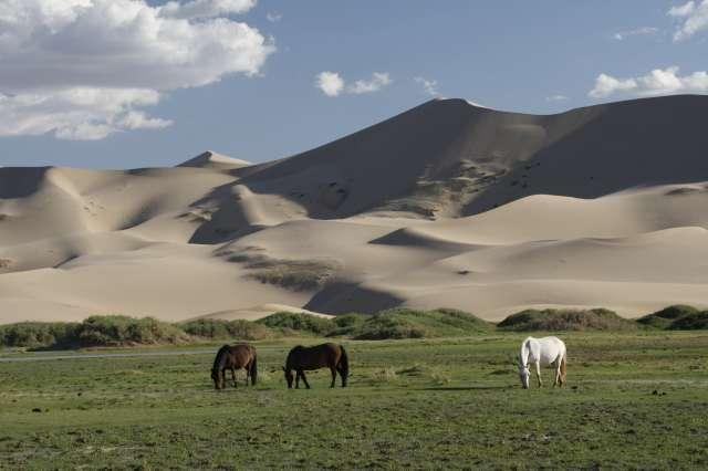 Un altro luogo affascinante e remoto, consigliato dalla rivista americano, è l'entroterra della Mongolia