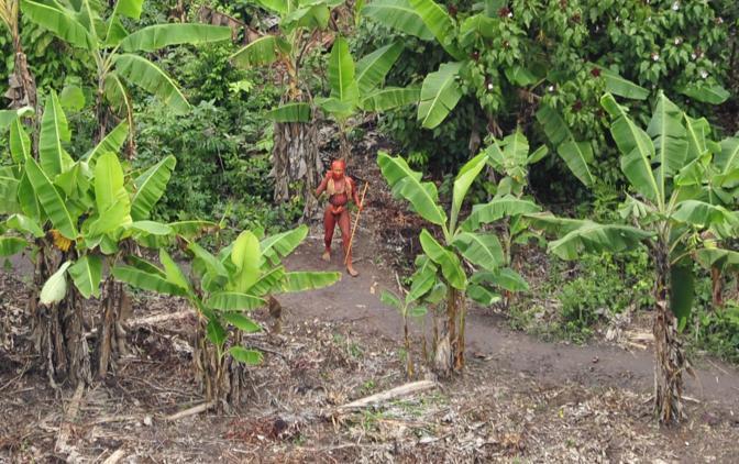 Alcuni membri della tribù sconosciuta nell'Amazzonia brasiliana al confine con il Perù