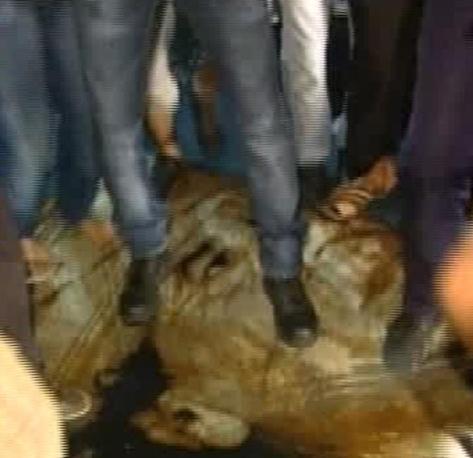 tg 24 che mostra un grande telo raffigurante il volto del rais Muammar Gheddafi ripetutamente calpestato per le vie di Tripoli 22 agosto 2011 ANSA/AL JAZEERA