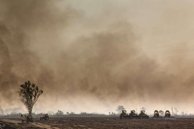 Il compound dove la foresta brucia per facilitare il lavoro dei caterpillar che prepareranno il terreno alle coltivazioni di palma da olio e canna da zucchero (alfredobini/cosmos @alfredobini75)