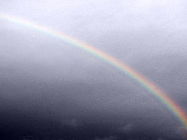 Molti sono gli utenti dei social network che stanno pubblicando in queste ore le foto dei vari arcobaleni sopra New York la mattina di martedì 30 ottobre (da Twitter)