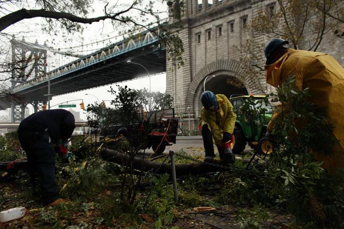 I vigili del fuoco rimuovono un albero caduto vicino al Manhattan Bridge (Allison Joyce/Getty)