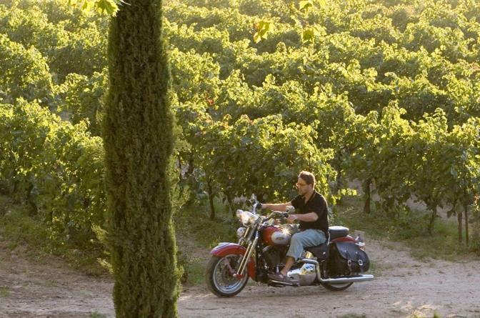 Le Moto Pi Famose Del Cinema