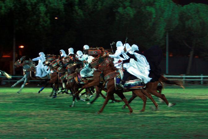 Esibizione di cavalli berberi a Roma (Infophoto)