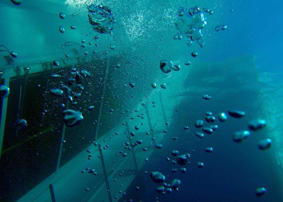 Le immagini subacquee del relitto riprese dalla Guardia di Finanza rievocano quelle spettacolari di qualche film (Olycom)